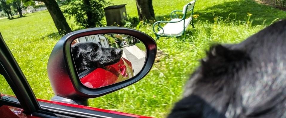 MazdaMX5_WienerAlpen_HQ2_Juli2016 (113 von 154)