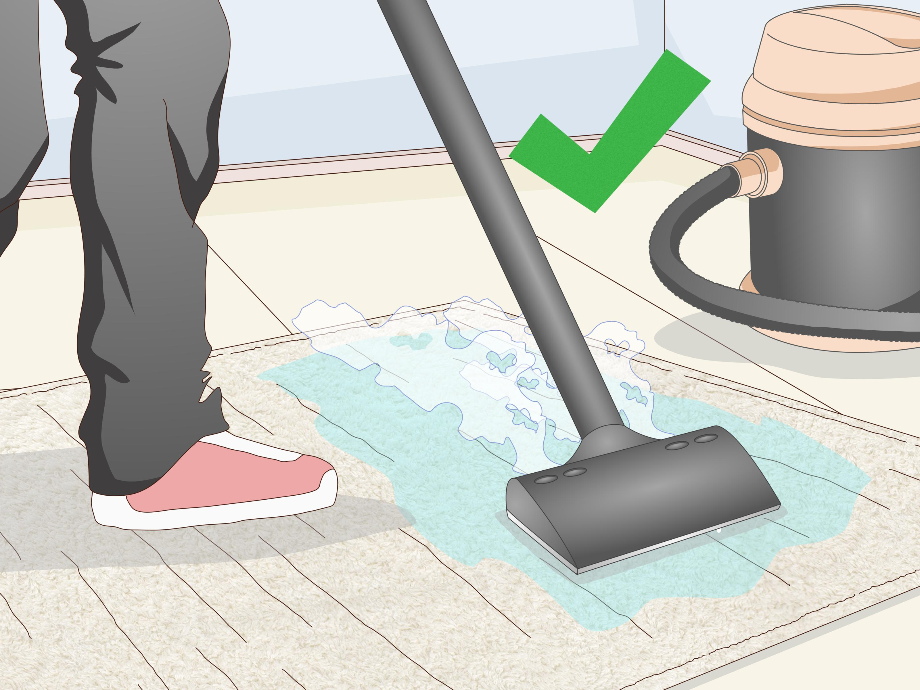 How Can I Clean A Carpet Without Vacuum Cleaner Review