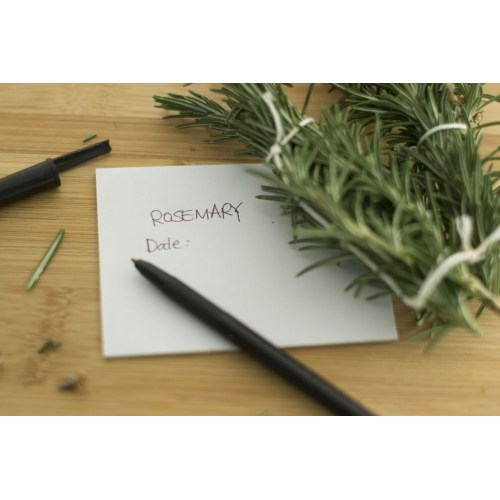 Medium Crop Of How To Harvest Rosemary
