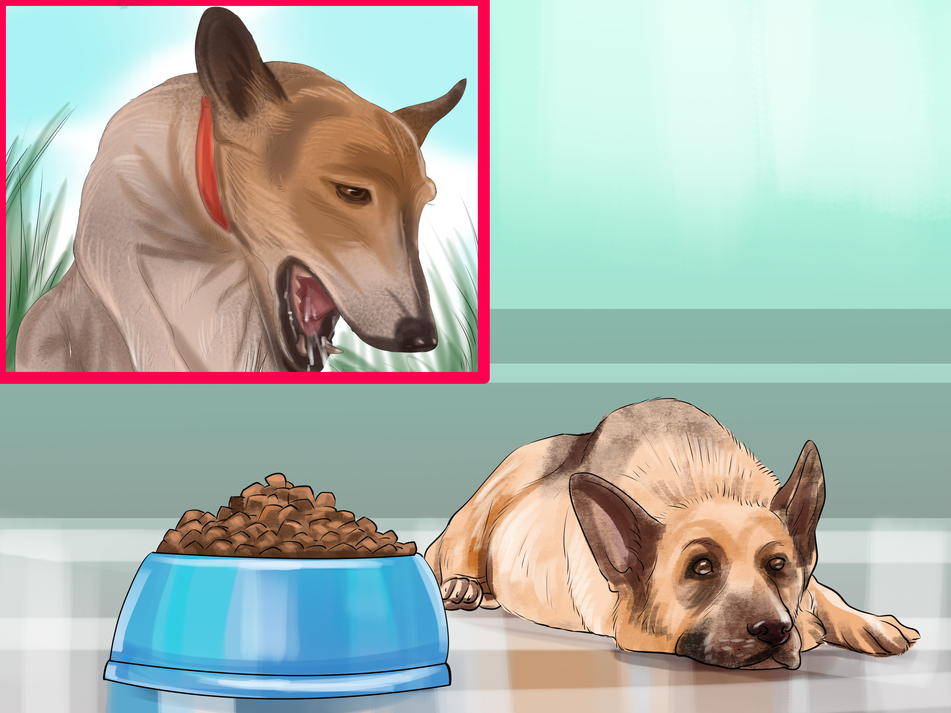 Fullsize Of How To Make A Dog Throw Up