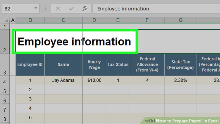 How to Prepare Payroll in Excel (with Pictures) - wikiHow