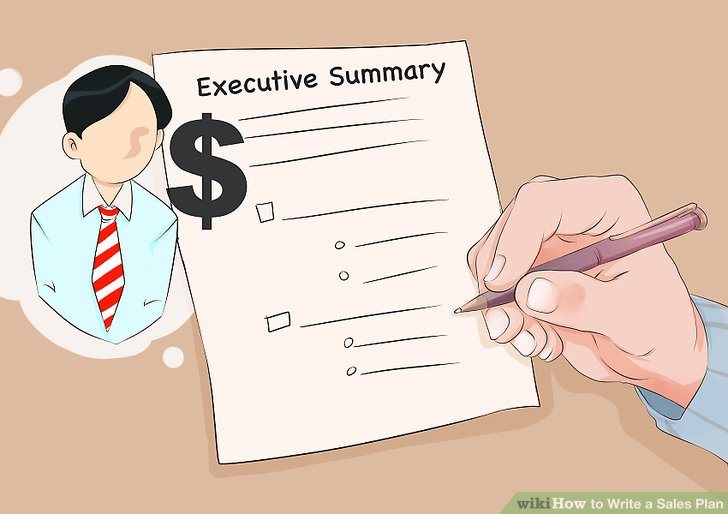 How to Write a Sales Plan 12 Steps (with Pictures) - wikiHow - sales plan