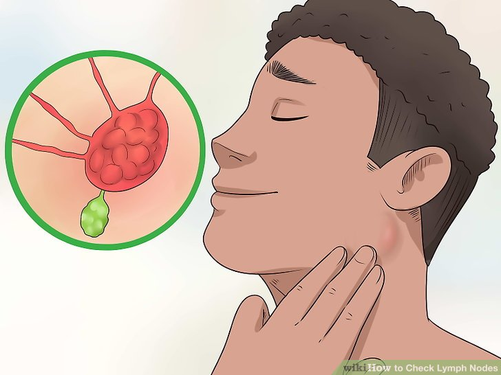 How to Check Lymph Nodes 12 Steps (with Pictures) - wikiHow