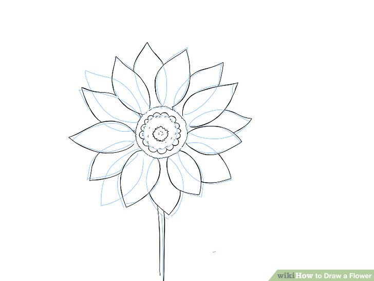 9 Easy Ways to Draw a Flower - wikiHow