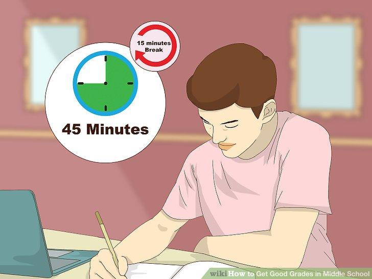 Ways to Get Excellent Grades in Middle-School - Hondentrimsalon