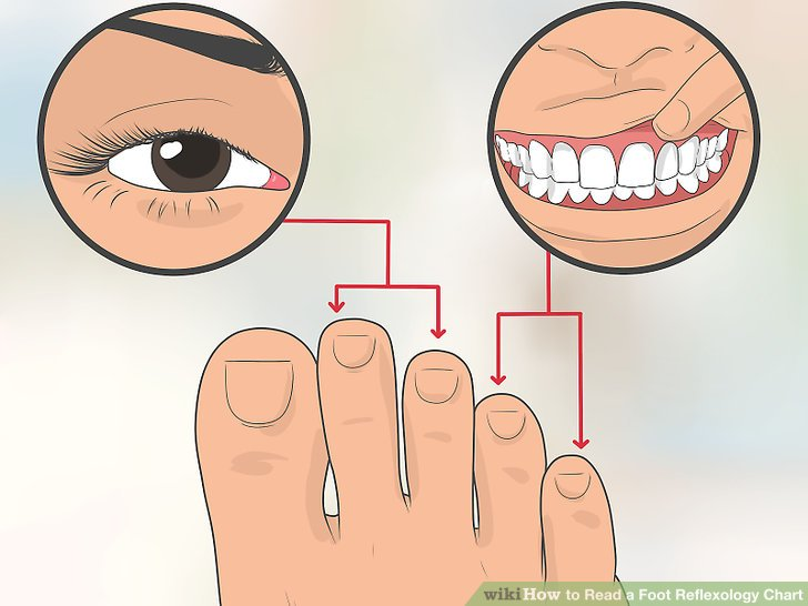How to Read a Foot Reflexology Chart 10 Steps (with Pictures)
