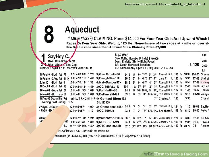 How to Read a Racing Form (with Pictures) - wikiHow - racing form
