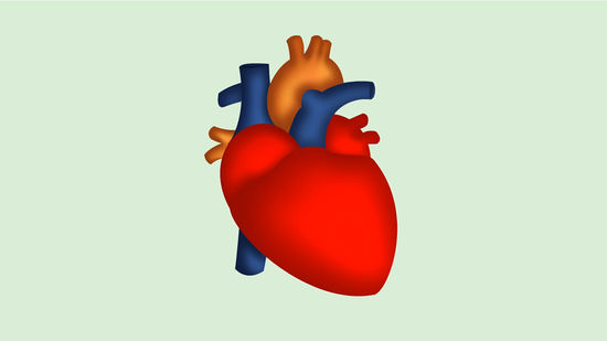 How to Draw a Human Heart 5 Steps (with Pictures) - wikiHow