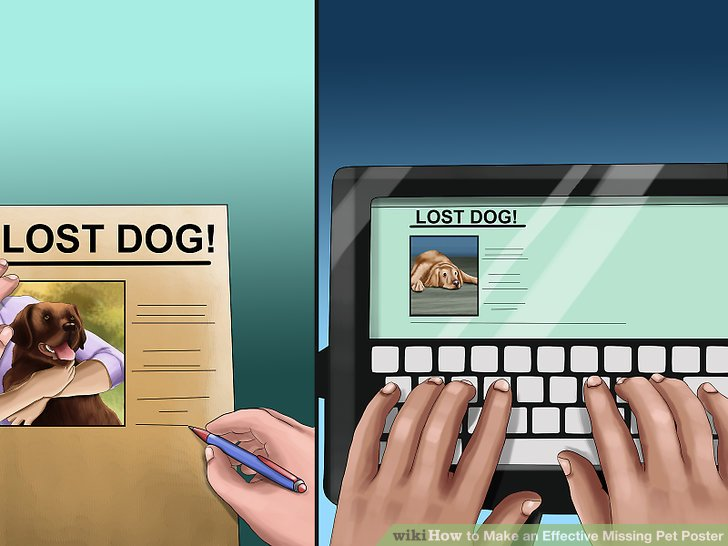 How to Make an Effective Missing Pet Poster (with Pictures) - make a missing poster