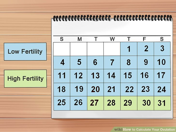 6 Ways to Calculate Your Ovulation - wikiHow