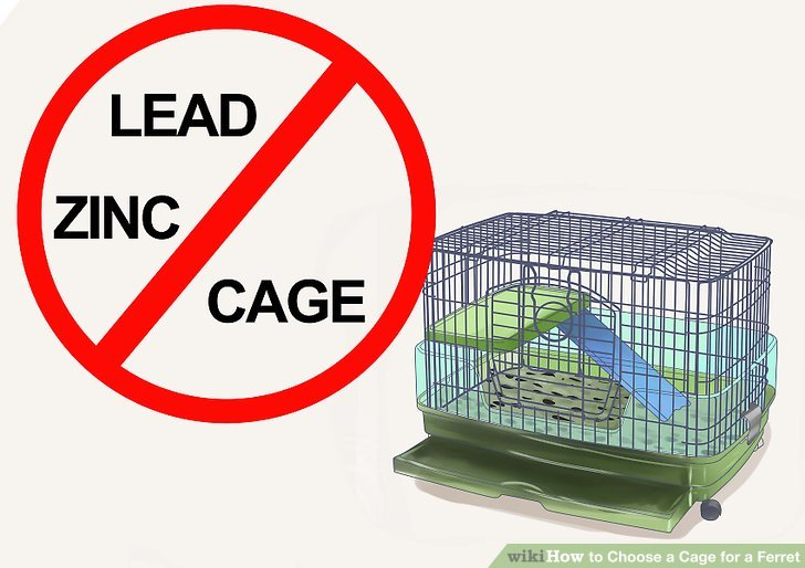 How to Choose a Cage for a Ferret 7 Steps (with Pictures)