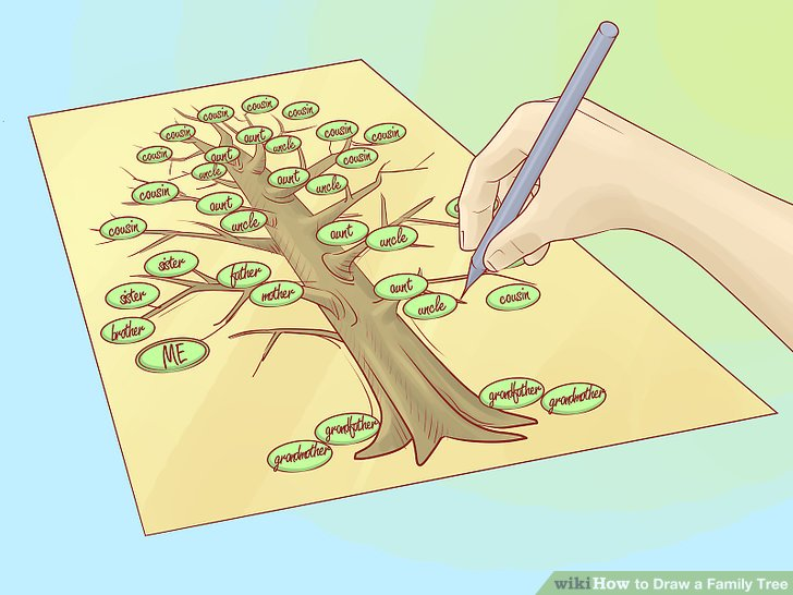 How to Draw a Family Tree 10 Steps (with Pictures) - wikiHow - family relation tree