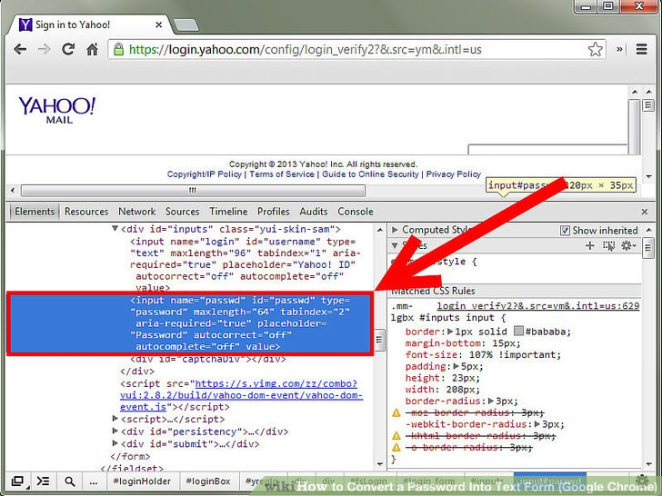 How to Convert a Password Into Text Form (Google Chrome) 5 Steps