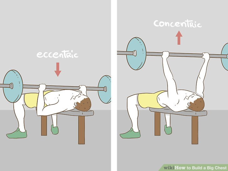 How to Build a Big Chest (with Pictures) - wikiHow