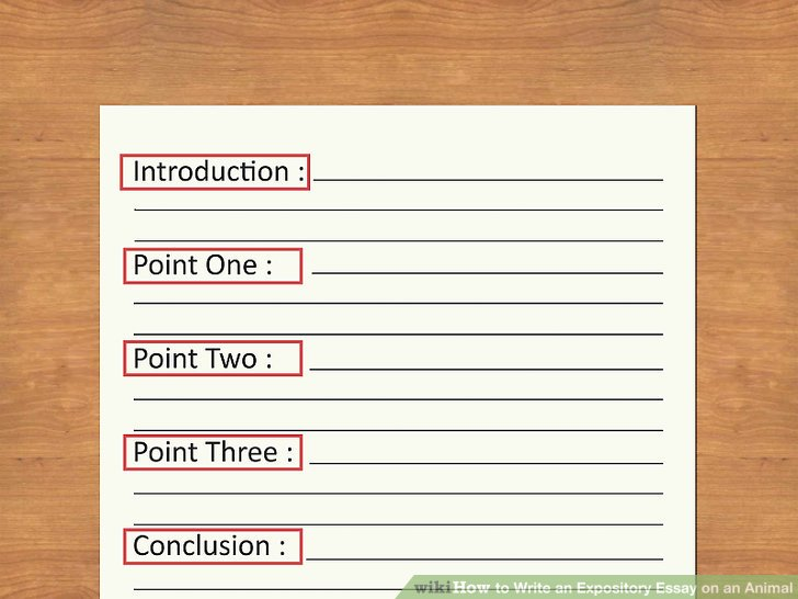 How to Write an Expository Essay on an Animal 11 Steps