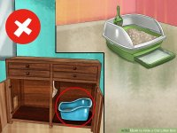 How to Hide a Cat Litter Box: 10 Steps (with Pictures ...