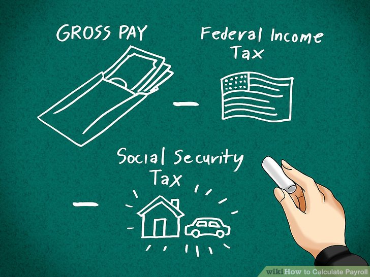calculating payroll taxes for employees