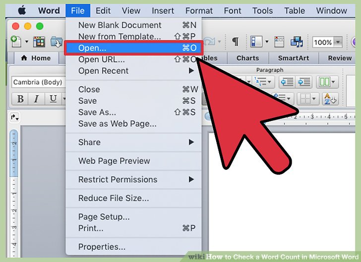 4 Ways to Check a Word Count in Microsoft Word - wikiHow - on word