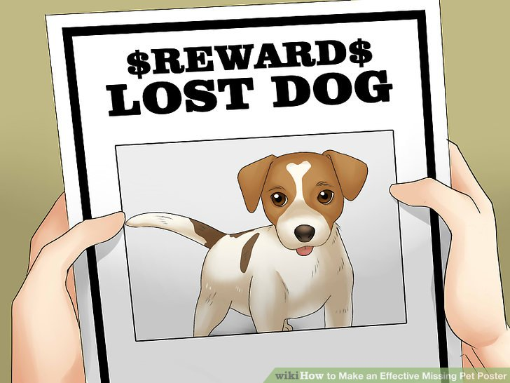 ... Maker How To Make An Effective Missing Pet Poster (with Pictures)   Lost  Pet Flyer  Lost Pet Flyer Maker