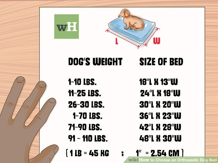 3 Ways to Choose an Orthopedic Dog Bed - wikiHow