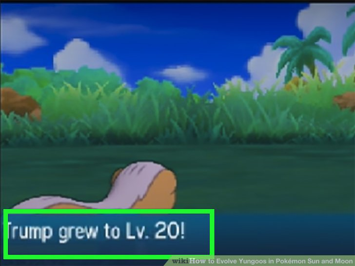How to Evolve Yungoos in Pokémon Sun and Moon 4 Steps
