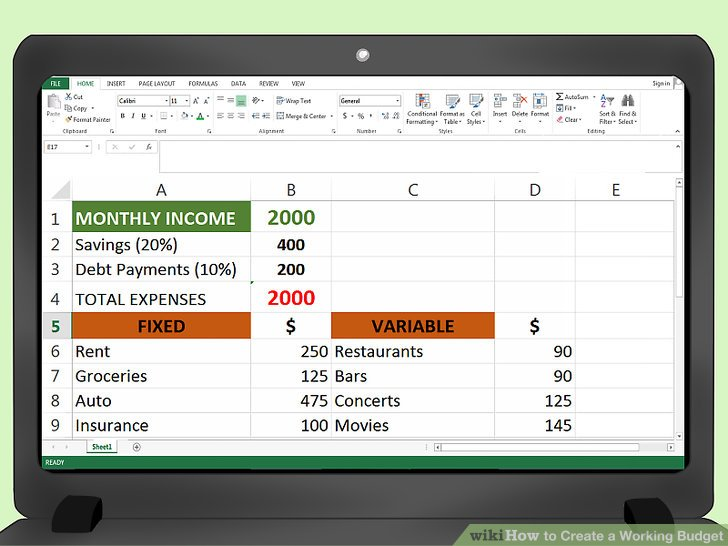 How to Create a Working Budget (with Examples) - wikiHow