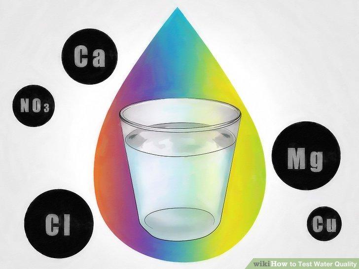 3 Ways to Test Water Quality - wikiHow