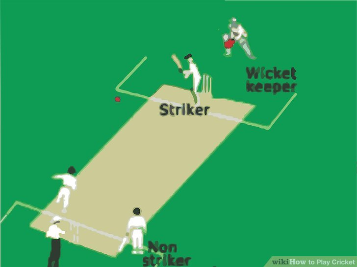 How to Play Cricket 14 Steps (with Pictures) - wikiHow