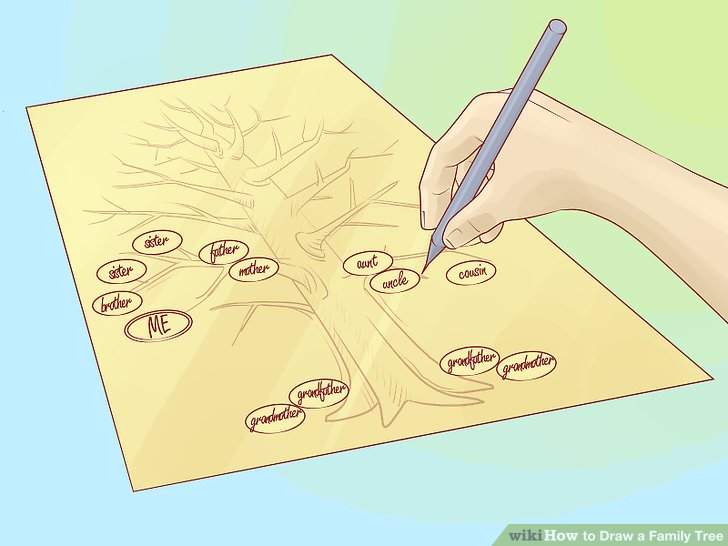 How to Draw a Family Tree 10 Steps (with Pictures) - wikiHow