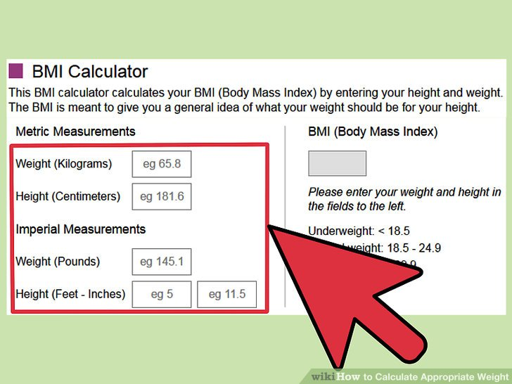 3 Ways to Calculate Appropriate Weight - wikiHow