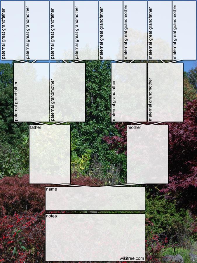 Free Printable Family Tree Diagrams - family tree diagram templates