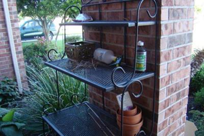 Doves Nesting In Unusual Locations