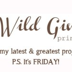 Oh, Hey Friday! — Wild Ginger Favs