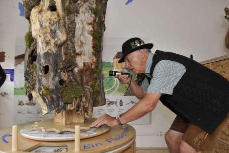 Höhlenwelt der Fledermäuse entdecken © Wildland-Stiftung Bayern