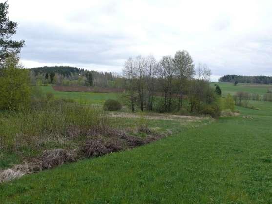 neue Biotopflächen