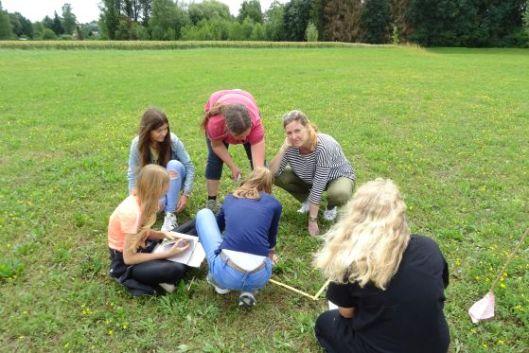 Auch die Lehrerinnen sind auf der Suche nach kleinen unscheinbaren Pflanzen.