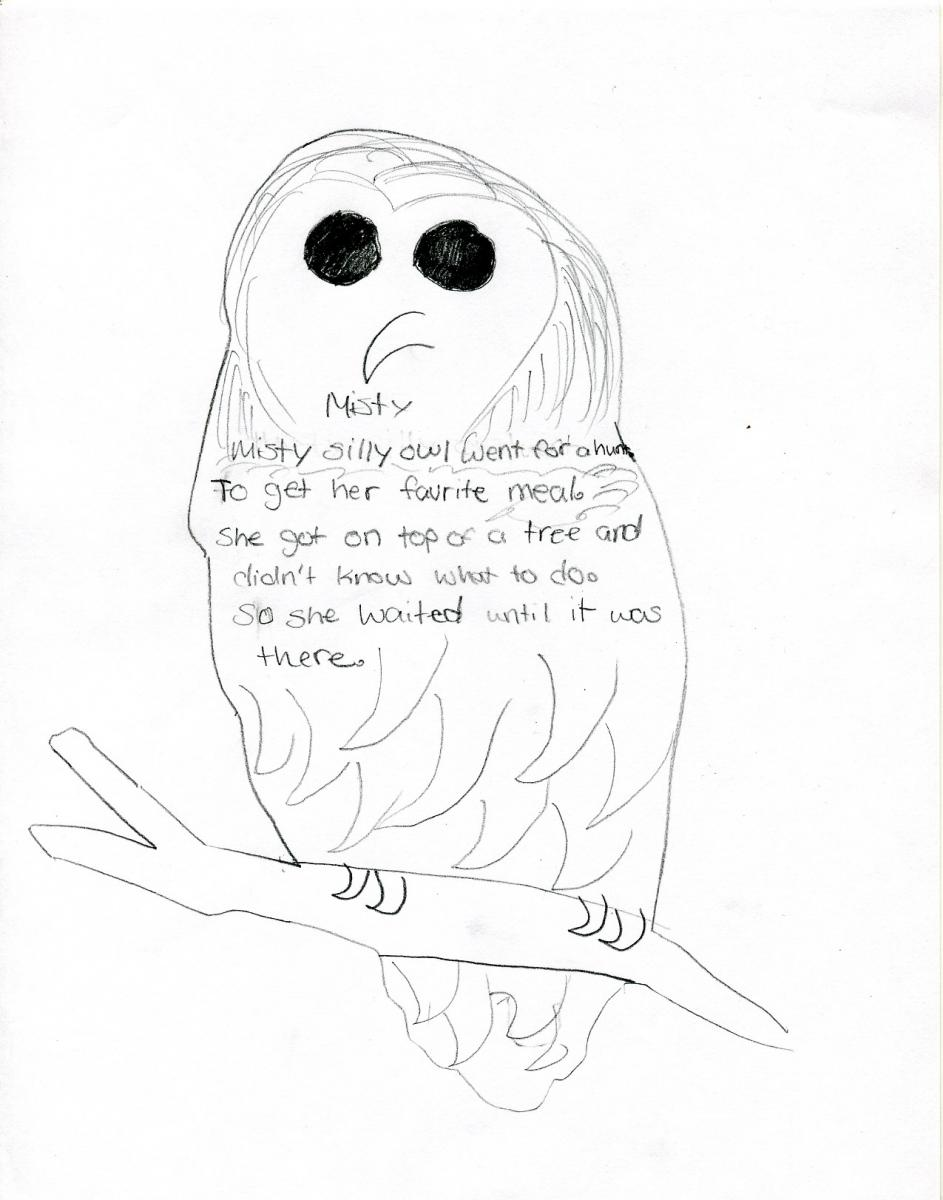 poems about owl