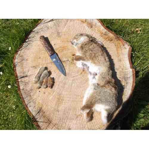 Medium Crop Of How To Butcher A Rabbit