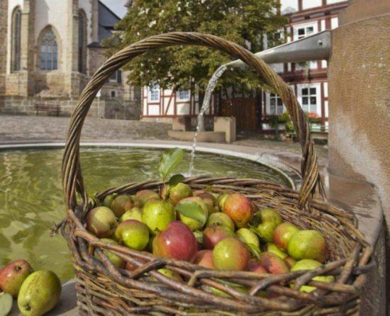Hessische Pomologentage in Naumburg