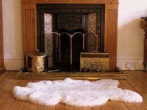 sheep skin rug 1