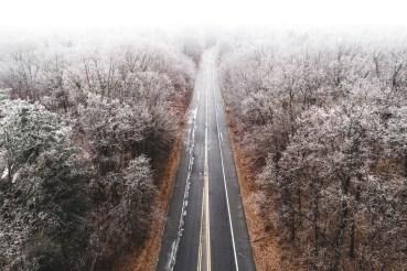 taking-to-the-skies-in-november-william-petruzzo27