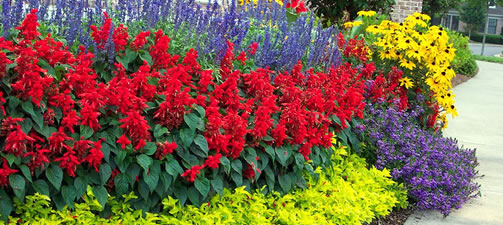Flower Bed Garden Design Ideas And Tips From The Experts