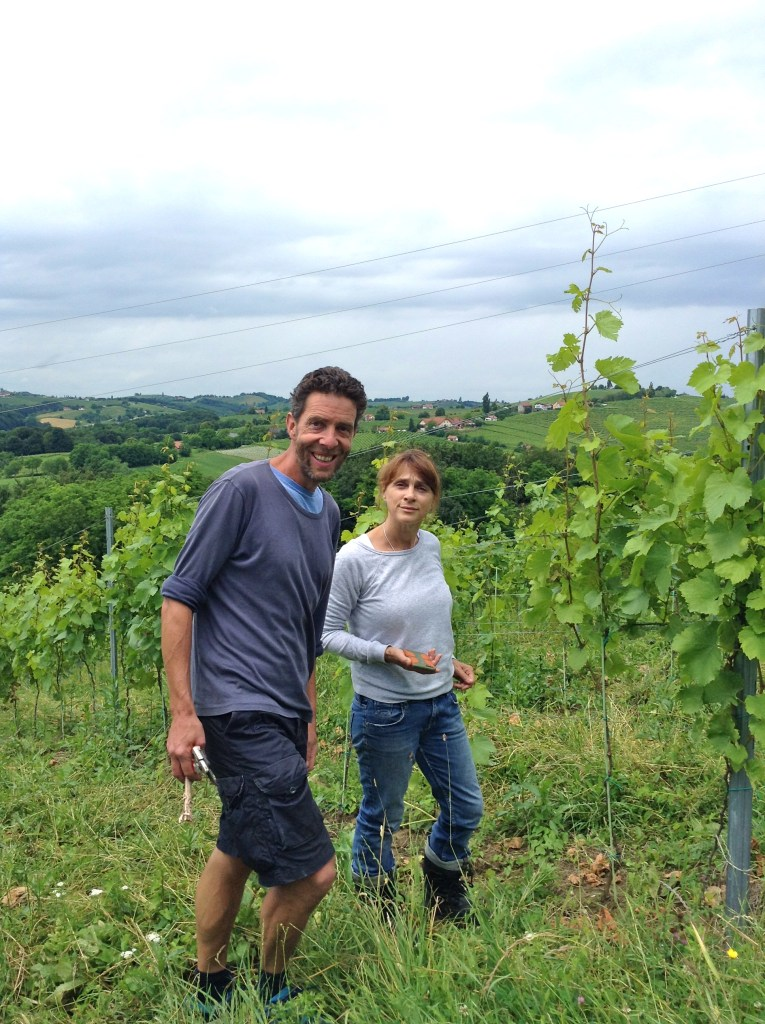 Sinéad & Liam amongst the vines.