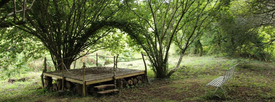 Wooded Glade at Wilton Farm