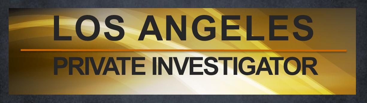 Rated Best Surveillance Investigators Los Angeles, New York - surveillance investigator