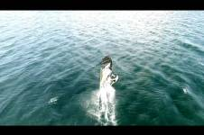 WINDSURFING WITH CLASSICAL MUSIC