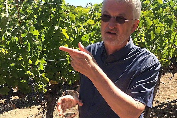 Jim Young Vintner