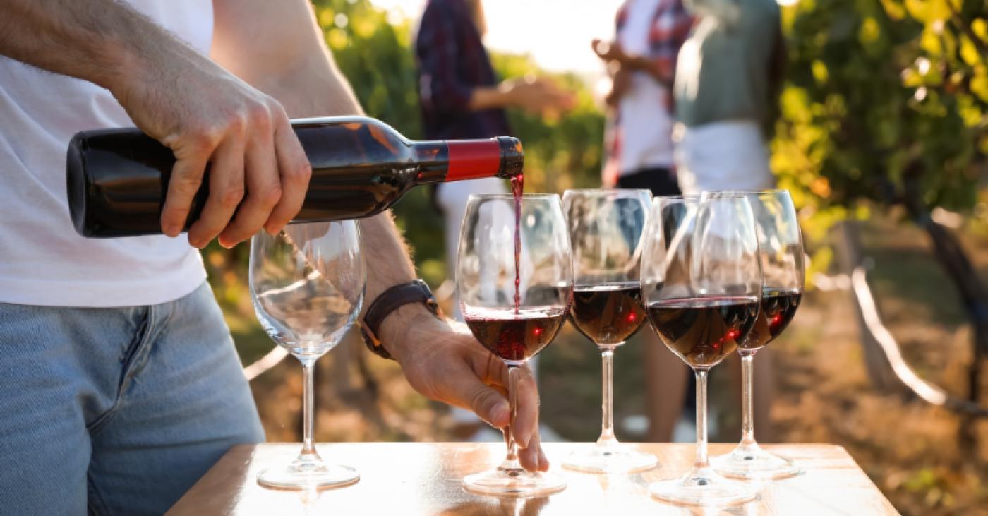 The Ten Best Italian Red Wines A Beginner\u0027s Guide