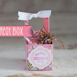 Easter / Spring / Mothers Day Treat Box
