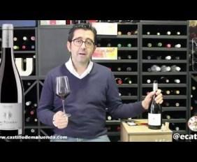 VIDEOCATA PIZARRAS DEL JALÓN 2011 PARA WINE UP